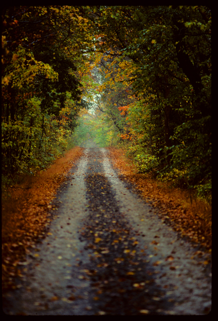 ©h. scott heist 09 bucks county dirt lane in autumn