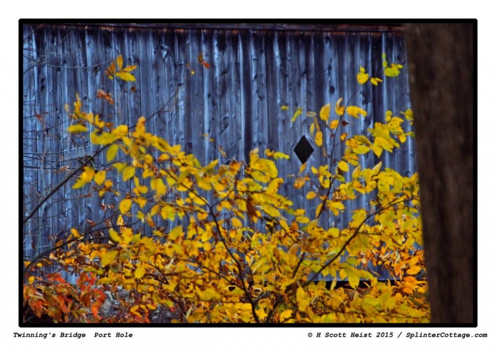 ©-H-Scott-Heist-2015---TB-p
